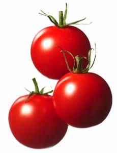 エンリッチミニトマト長万部アグリ